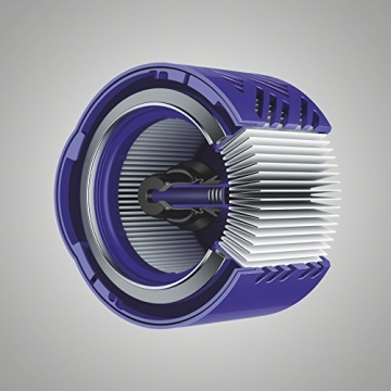 Filter des Dyson V6 Absolute